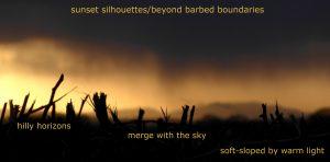 P1070090-004 sunset silhouettes haiku for instagram revised