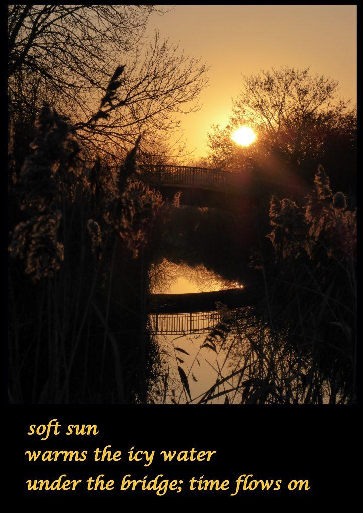 soft-sun-2