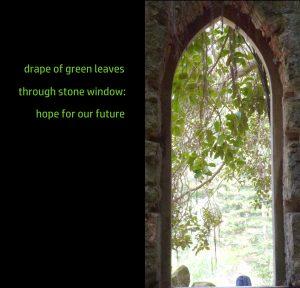 green-drape-haiku-finished