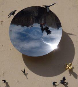 bird bath reflections